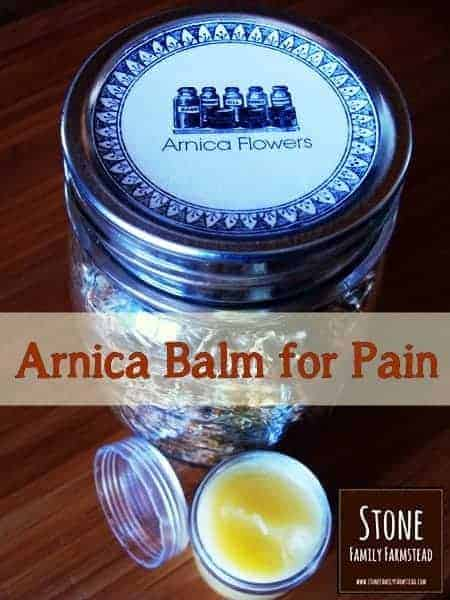 Arnica Balm for Pain - Stone Family Farmstead