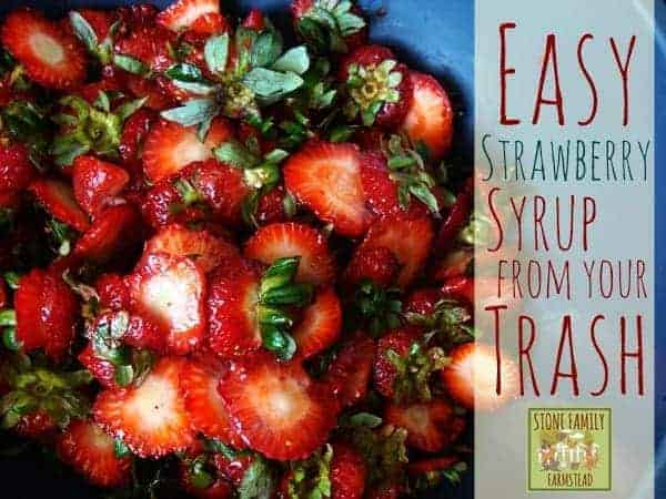 Easy Strawberry Syrup from Your Trash - Stone Family Farmstead