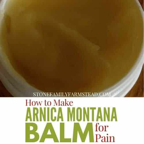 """Tub of homemade balm with the title """"How to Make Arnica Montana Balm for Pain - Stone Family Farmstead"""""""