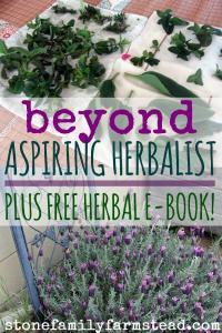 Beyond Aspiring Herbalist - Stone Family Farmstead