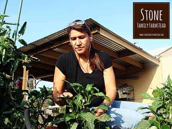 Tending the Garden at Stone Family Farmstead