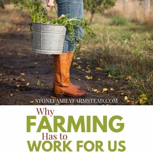"Person standing on a path in brown boots holding a pale with the title ""Why Farming Has to Work for Us - Stone Family Farmstead"""