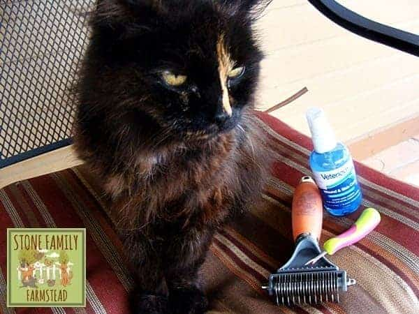 grooming tools for long haired cats