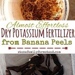 """dried banana peels and homemade potassium fertilizer with the title """"almost effortless dry potassium fertilizer from banana peels"""""""