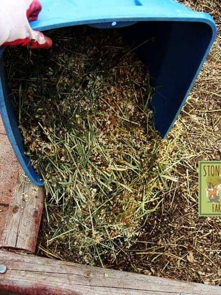 i dump compost right into my garden bed - Stone Family Farmstead