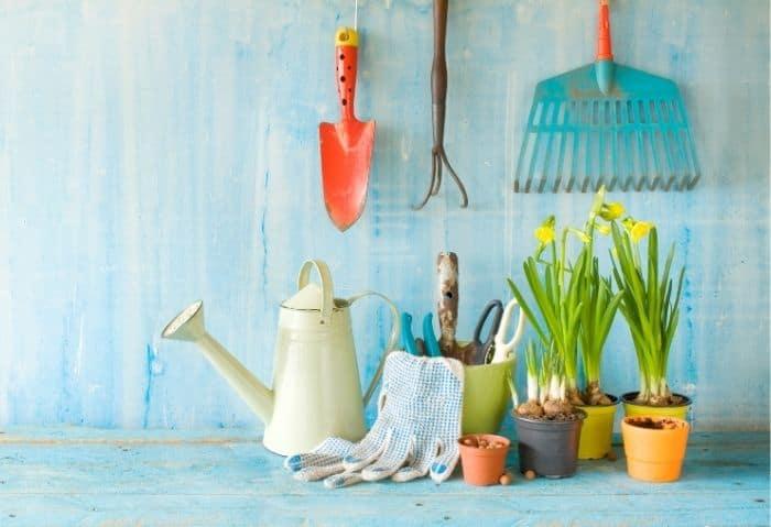 How to Get Cheap Garden Supplies_ Dollar Store Edition - Stone Family Farmstead