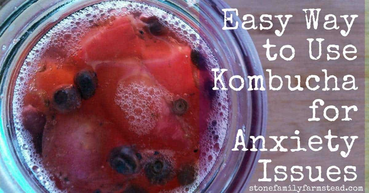 """glass of kombucha with the title """"Easy Way to Use Kombucha for Anxiety Issues"""""""