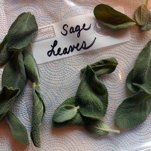 Fresh sage leaves in a plastic zipper bag