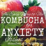 """Assorted fruit and herbs with the title """"Easy Way to Use Kombucha for Anxiety Issues"""""""