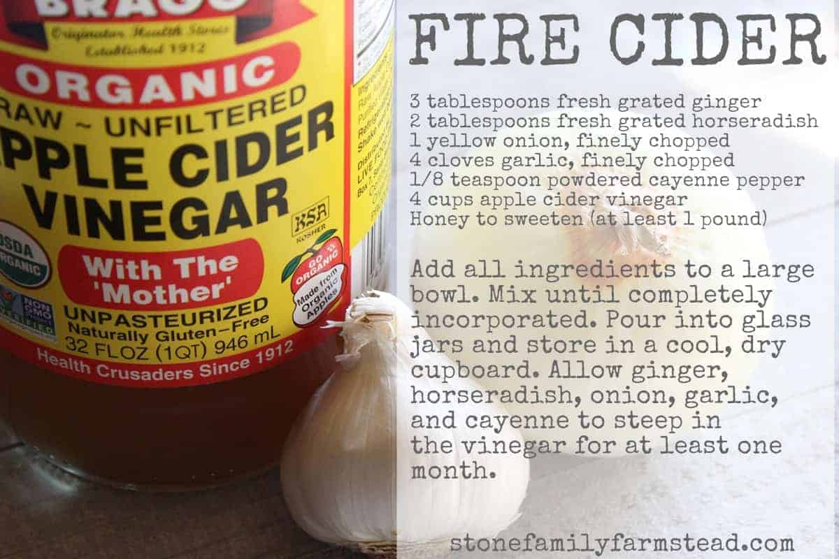 cold and flu season recipe for homemade fire cider: bottle of organic apple cider vinegar with a head of garlic and one onion with recipe