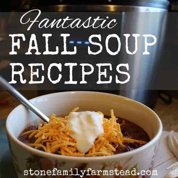 """bowl of chili topped with cheese and sour cream with the title """"Fantastic Fall Soup Recipes"""""""