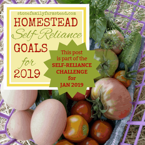 basket of harvested veggies with the title self-reliance challenge goals 2019