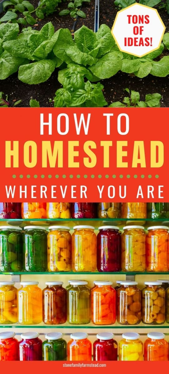 How to Live the Homesteader's Life: 70 Ideas from Apartment to Acreage - Stone Family Farmstead