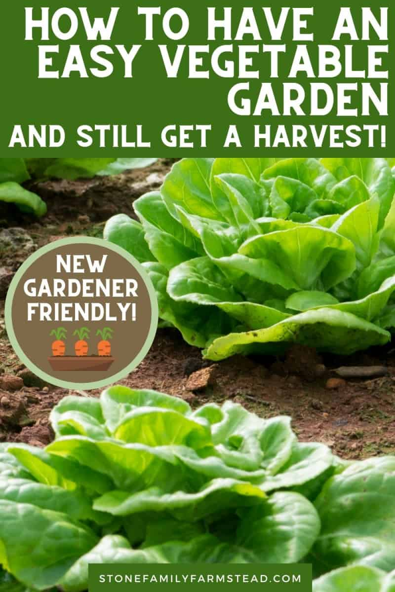 How to Have an Easy Garden {and Still Get a Harvest} - Stone Family Farmstead