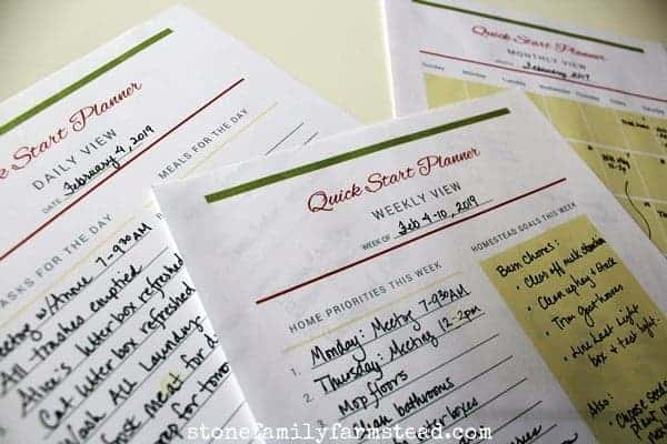 """planner sheets with the title """"How to Get It All Done in a Day"""""""
