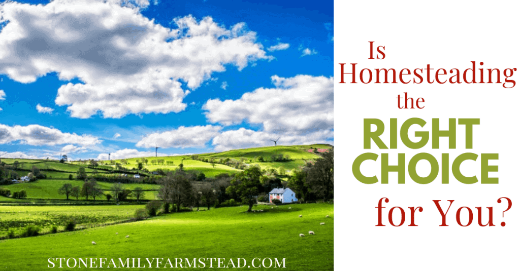 "beautiful cloudy sky over green homestead land with the title ""Is Homesteading the Right Choice for You_ - Stone Family Farmstead"""