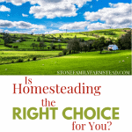 """beautiful cloudy sky over green homestead land with the title """"Is Homesteading the Right Choice for You_ - Stone Family Farmstead"""""""