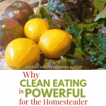 "freshly harvested tomatoes, lemons and greens with the title ""Why Clean Eating is Powerful for the Homesteader - Stone Family Farmstead"""