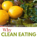 """freshly harvested tomatoes, lemons and greens with the title """"Why Clean Eating is Powerful for the Homesteader - Stone Family Farmstead"""""""