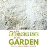 """food grade diatomaceous earth with the title """"How to Use Diatomaceous Earth in the Garden - Stone Family Farmstead"""""""