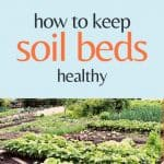 Tips for how to keep soil beds healthy - Stone Family Farmstead