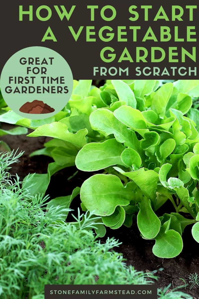 How to Start A Vegetable Garden from Scratch - Stone Family Farmstead pin