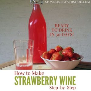 wine in a glass and in a bottle next to a bowl of fresh strawberries with the title