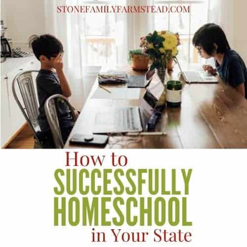 "two boys sitting at a table with computers and the title ""How to Successfully Homeschool in Your State - Stone Family Farmstead"""