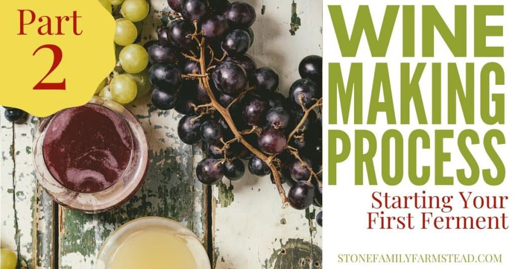 """grapes and two glasses of wine against a wood background with the title """"Wine Making Process Part 2 - Stone Family Farmstead"""""""