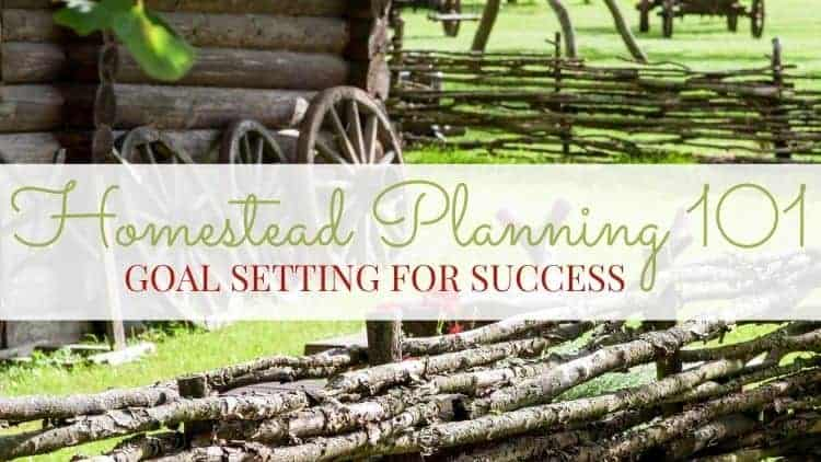 Homestead Planning 101: Goal Setting for Success