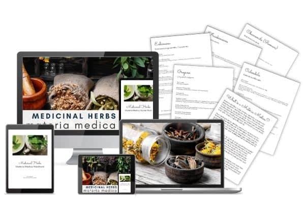 Medicinal Herbs Materia Medica Notebook