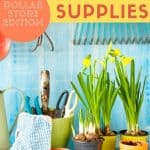How to Get Cheap Garden Supplies_ Dollar Store Edition - Stone Family Farmstead