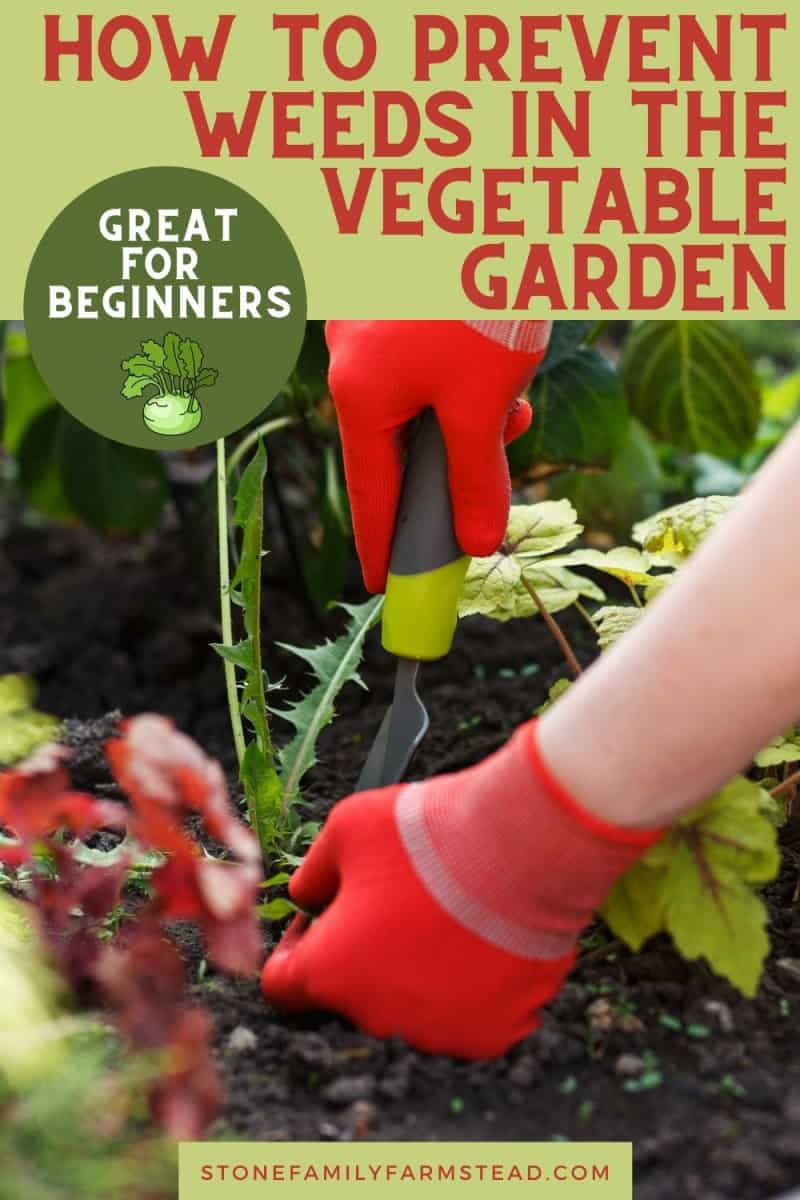 How to Prevent Weeds in the Vegetable Garden - Stone Family Farmstead